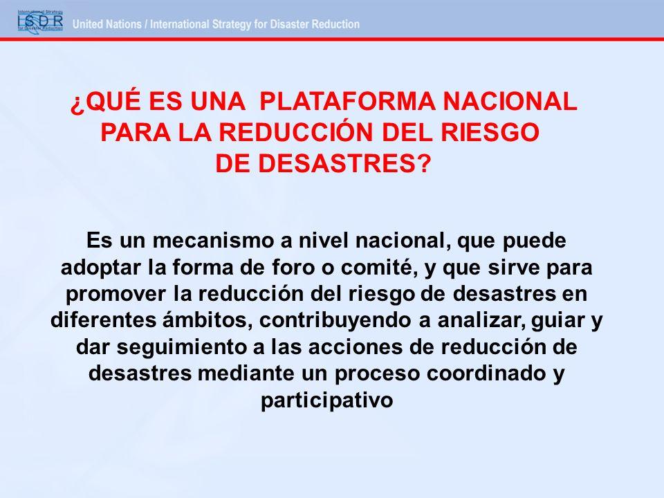 ¿QUÉ ES UNA PLATAFORMA NACIONAL PARA LA REDUCCIÓN DEL RIESGO DE DESASTRES? Es un mecanismo a nivel nacional, que puede adoptar la forma de foro o comi