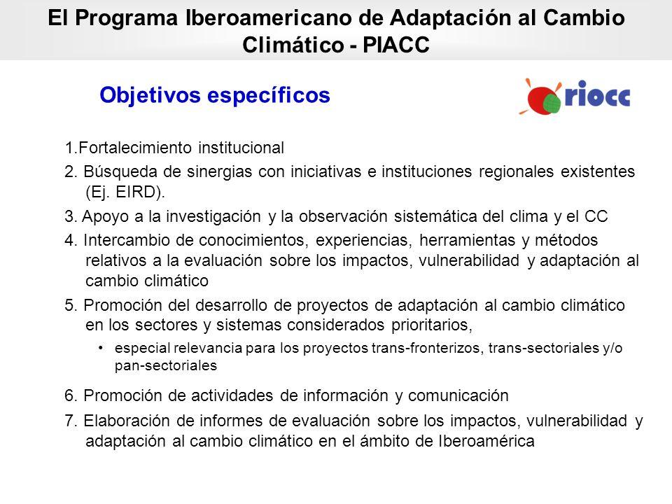 1.Fortalecimiento institucional 2. Búsqueda de sinergias con iniciativas e instituciones regionales existentes (Ej. EIRD). 3. Apoyo a la investigación
