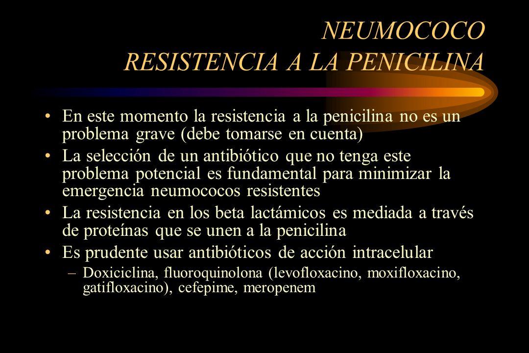 NEUMOCOCO RESISTENCIA A LA PENICILINA En este momento la resistencia a la penicilina no es un problema grave (debe tomarse en cuenta) La selección de