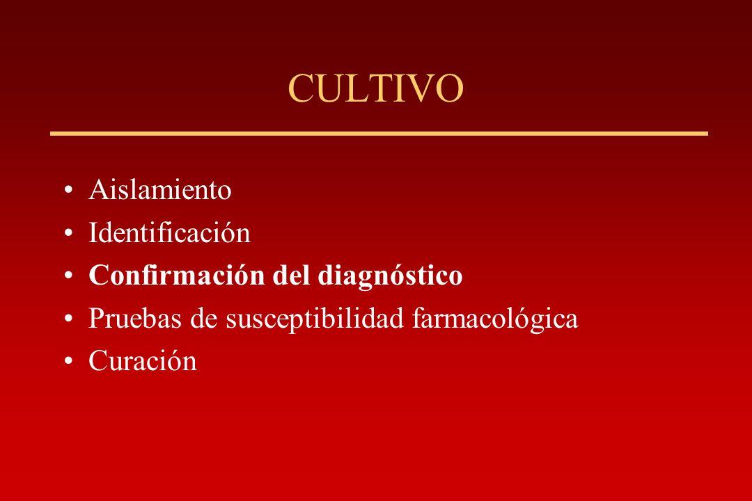 CULTIVO Aislamiento Identificación Confirmación del diagnóstico Pruebas de susceptibilidad farmacológica Curación