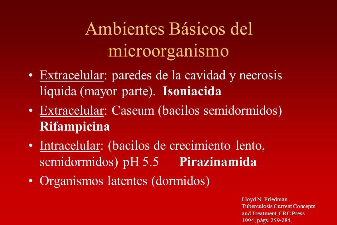 Ambientes Básicos del microorganismo Extracelular: paredes de la cavidad y necrosis líquida (mayor parte). Isoniacida Extracelular: Caseum (bacilos se