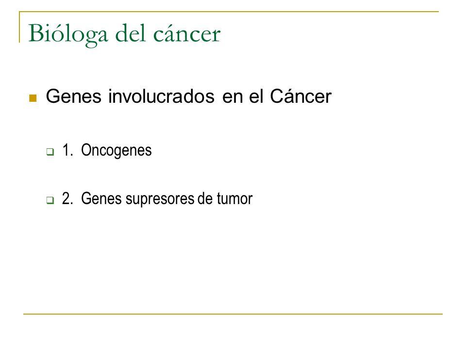 Bióloga del cáncer Genes involucrados en el Cáncer 1. Oncogenes 2. Genes supresores de tumor
