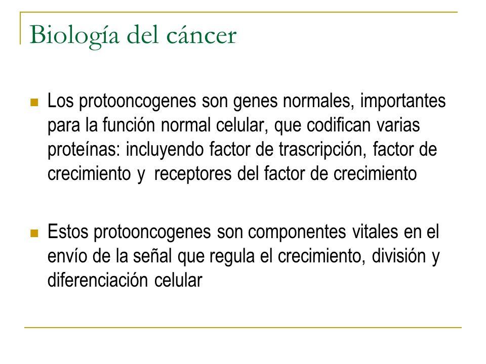 Biología del cáncer Los protooncogenes son genes normales, importantes para la función normal celular, que codifican varias proteínas: incluyendo fact