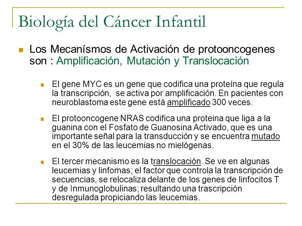 Biología del Cáncer Infantil Los Mecanísmos de Activación de protooncogenes son : Amplificación, Mutación y Translocación El gene MYC es un gene que c