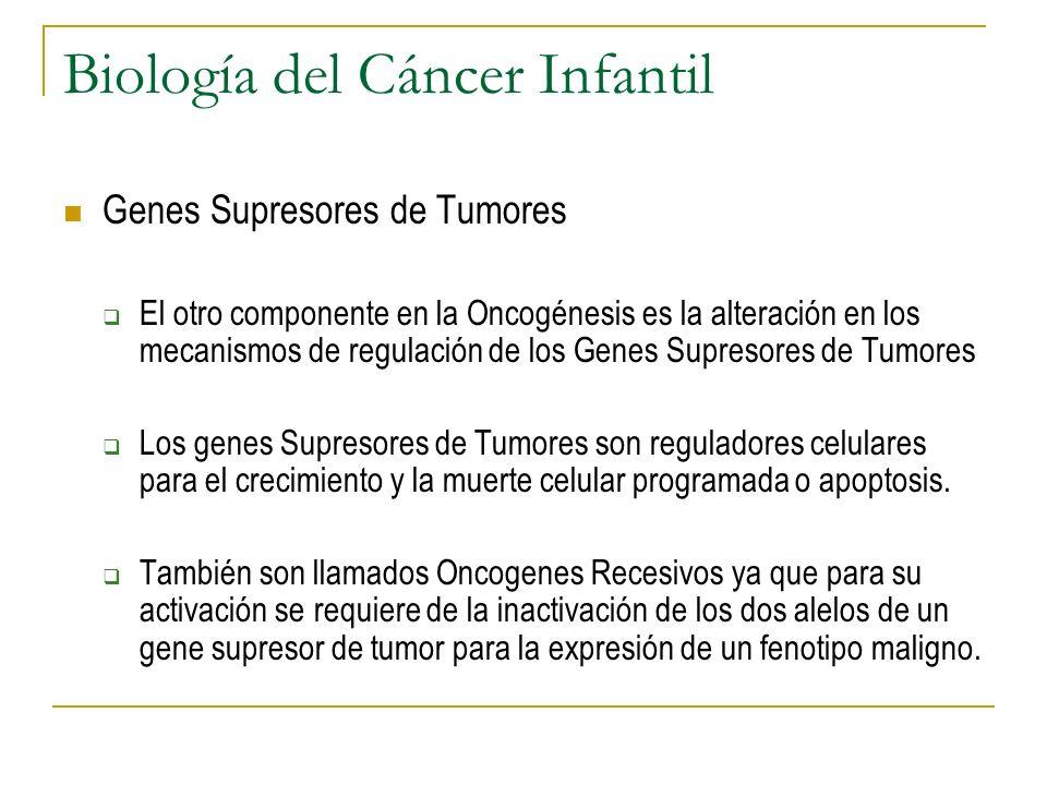 Biología del Cáncer Infantil Genes Supresores de Tumores El otro componente en la Oncogénesis es la alteración en los mecanismos de regulación de los