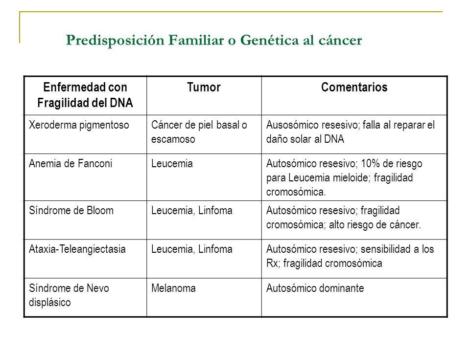 Predisposición Familiar o Genética al cáncer Enfermedad con Fragilidad del DNA TumorComentarios Xeroderma pigmentosoCáncer de piel basal o escamoso Au