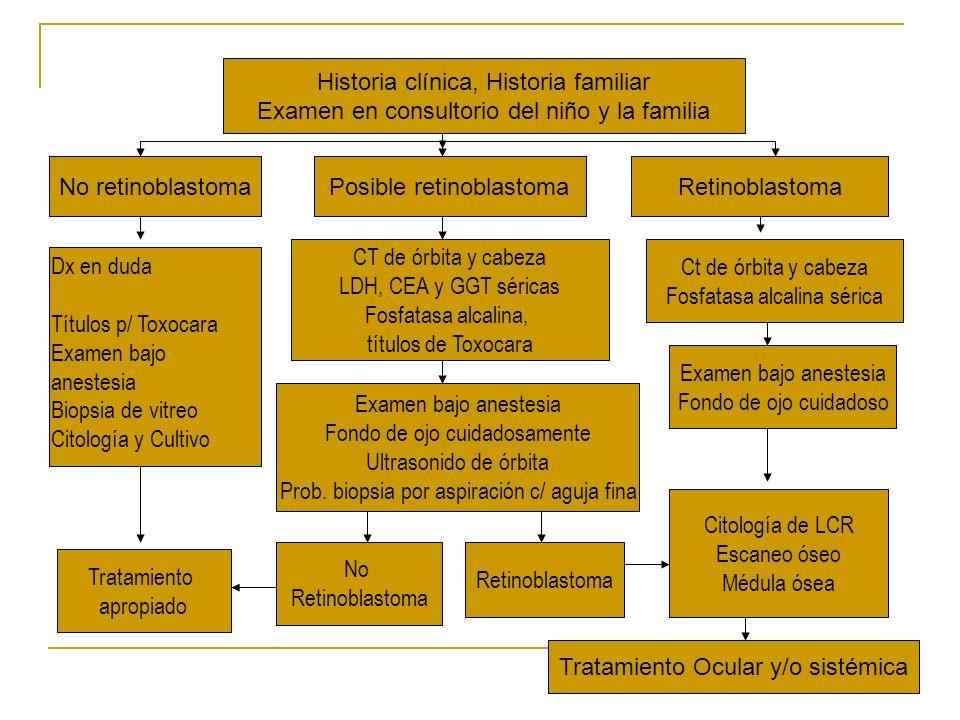 Historia clínica, Historia familiar Examen en consultorio del niño y la familia No retinoblastomaPosible retinoblastomaRetinoblastoma Dx en duda Títul
