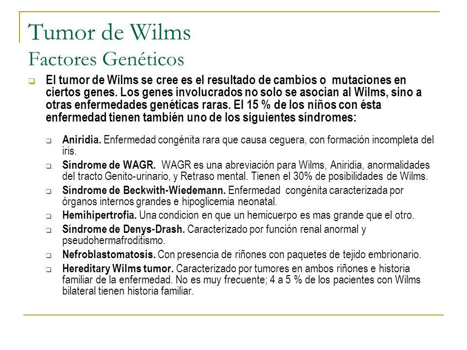 Tumor de Wilms Factores Genéticos El tumor de Wilms se cree es el resultado de cambios o mutaciones en ciertos genes. Los genes involucrados no solo s