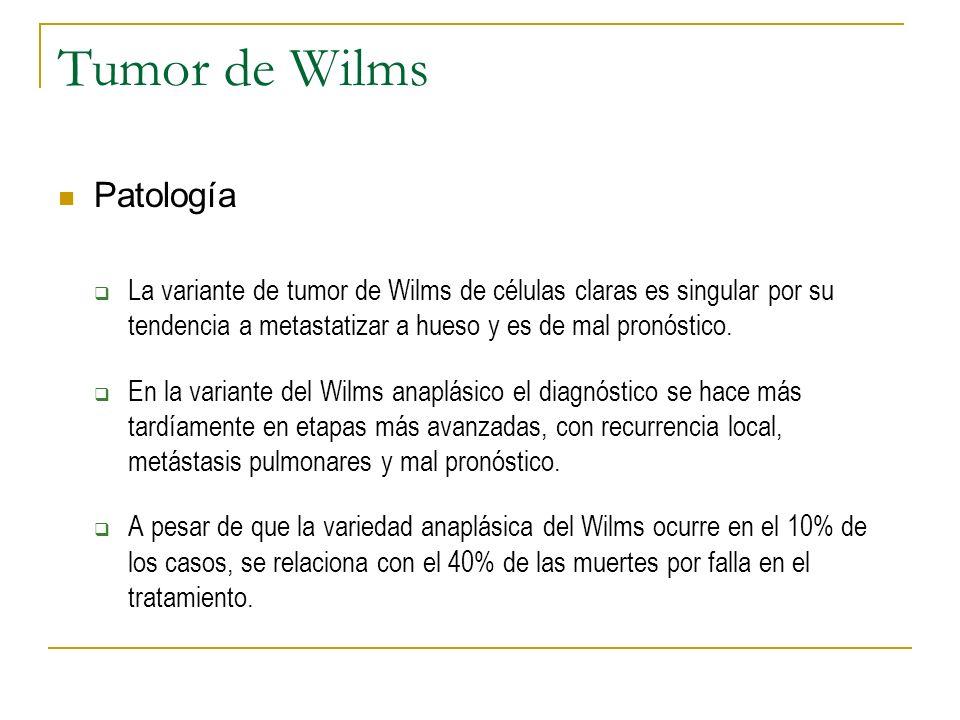 Tumor de Wilms Patología La variante de tumor de Wilms de células claras es singular por su tendencia a metastatizar a hueso y es de mal pronóstico. E