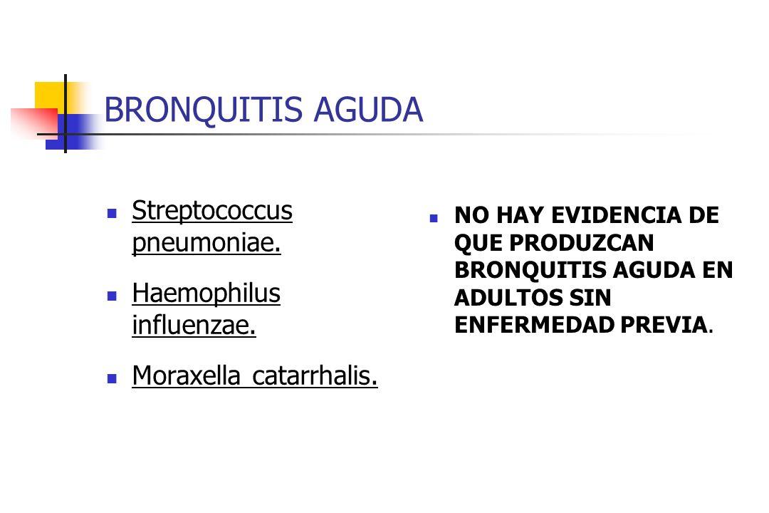 BRONQUITIS AGUDA Streptococcus pneumoniae. Haemophilus influenzae. Moraxella catarrhalis. NO HAY EVIDENCIA DE QUE PRODUZCAN BRONQUITIS AGUDA EN ADULTO
