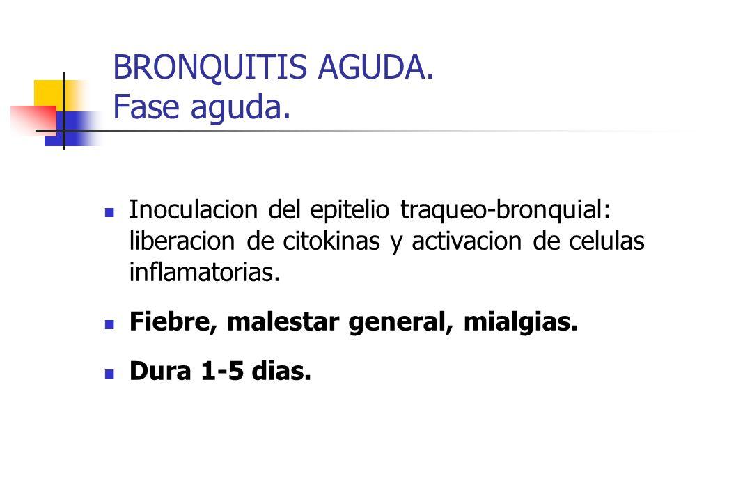 BRONQUITIS AGUDA. Fase aguda. Inoculacion del epitelio traqueo-bronquial: liberacion de citokinas y activacion de celulas inflamatorias. Fiebre, males