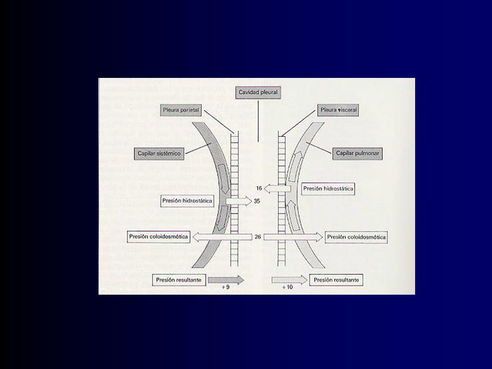 Complicaciones Empiema Hemorragia Enfisema subcutáneo Edema por re expansión pulmonar