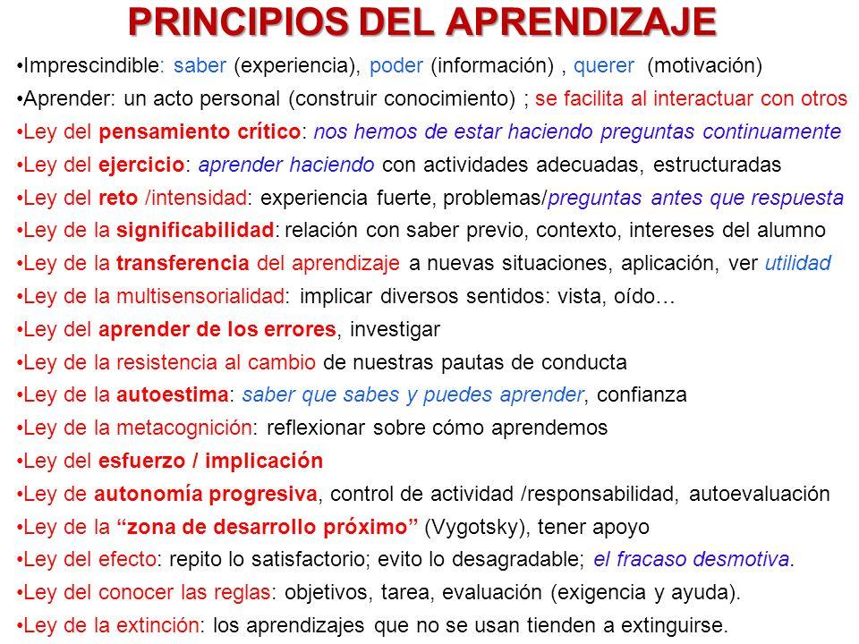 PRINCIPIOS DEL APRENDIZAJE Imprescindible: saber (experiencia), poder (información), querer (motivación) Aprender: un acto personal (construir conocim