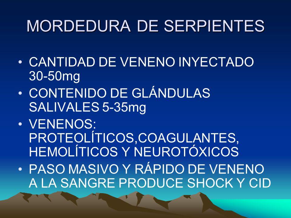 MORDEDURA DE SERPIENTES CANTIDAD DE VENENO INYECTADO 30-50mg CONTENIDO DE GLÁNDULAS SALIVALES 5-35mg VENENOS: PROTEOLÍTICOS,COAGULANTES, HEMOLÍTICOS Y
