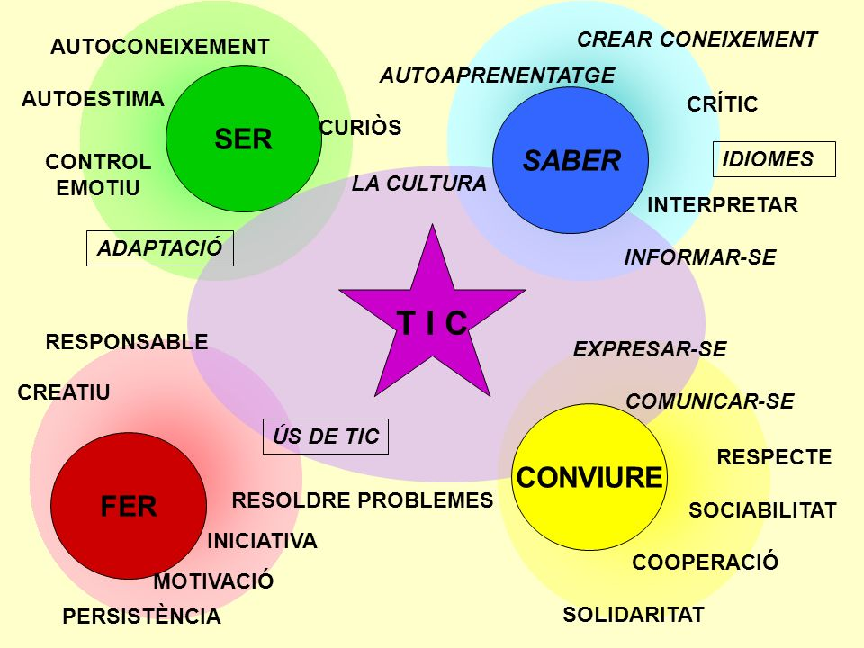 SER FER RESPECTE SOCIABILITAT COOPERACIÓ SOLIDARITAT AUTOAPRENENTATGE CURIÒS IDIOMES AUTOCONEIXEMENT AUTOESTIMA CONTROL EMOTIU RESOLDRE PROBLEMES INICIATIVA MOTIVACIÓ CREATIU T I C ÚS DE TIC RESPONSABLE LA CULTURA INTERPRETAR INFORMAR-SE EXPRESAR-SE COMUNICAR-SE SABER CONVIURE PERSISTÈNCIA ADAPTACIÓ CREAR CONEIXEMENT CRÍTIC