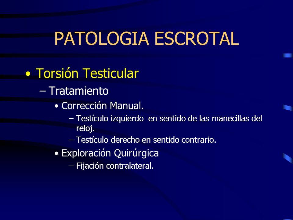 PATOLOGIA ESCROTAL Torsión Testicular –Tratamiento Corrección Manual. –Testículo izquierdo en sentido de las manecillas del reloj. –Testículo derecho