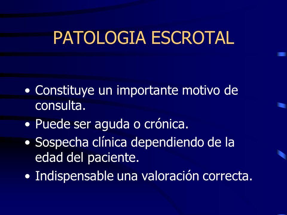 PATOLOGIA ESCROTAL Constituye un importante motivo de consulta. Puede ser aguda o crónica. Sospecha clínica dependiendo de la edad del paciente. Indis