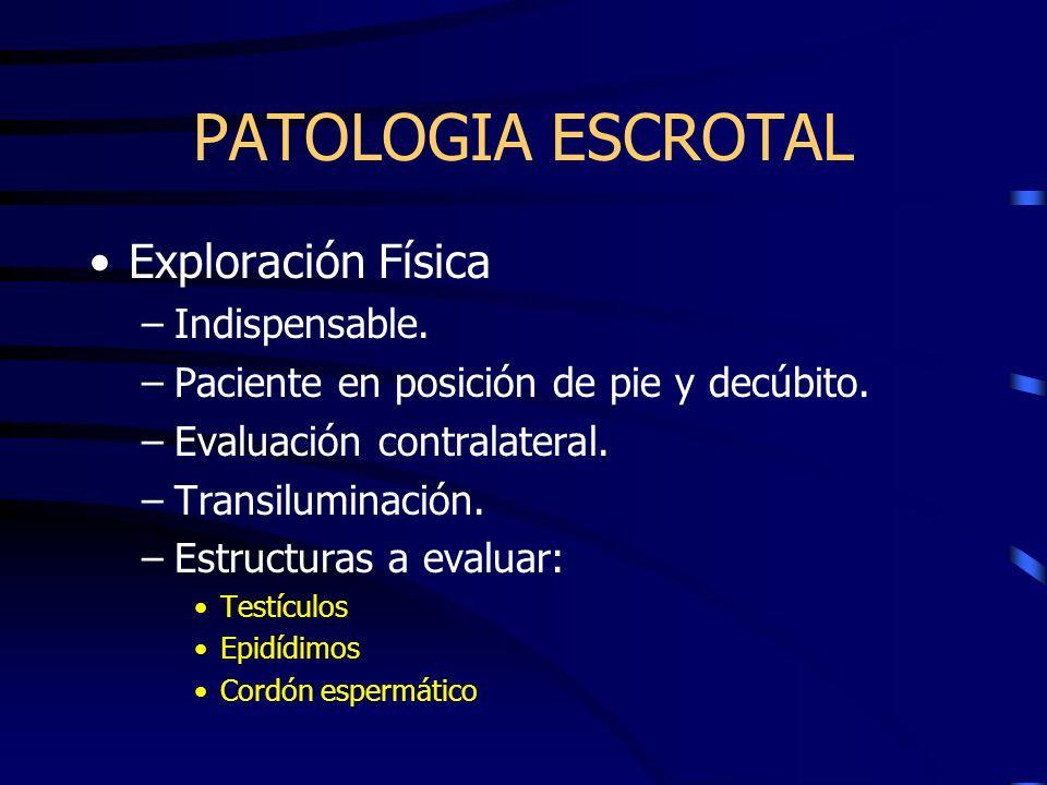 PATOLOGIA ESCROTAL Exploración Física –Indispensable. –Paciente en posición de pie y decúbito. –Evaluación contralateral. –Transiluminación. –Estructu