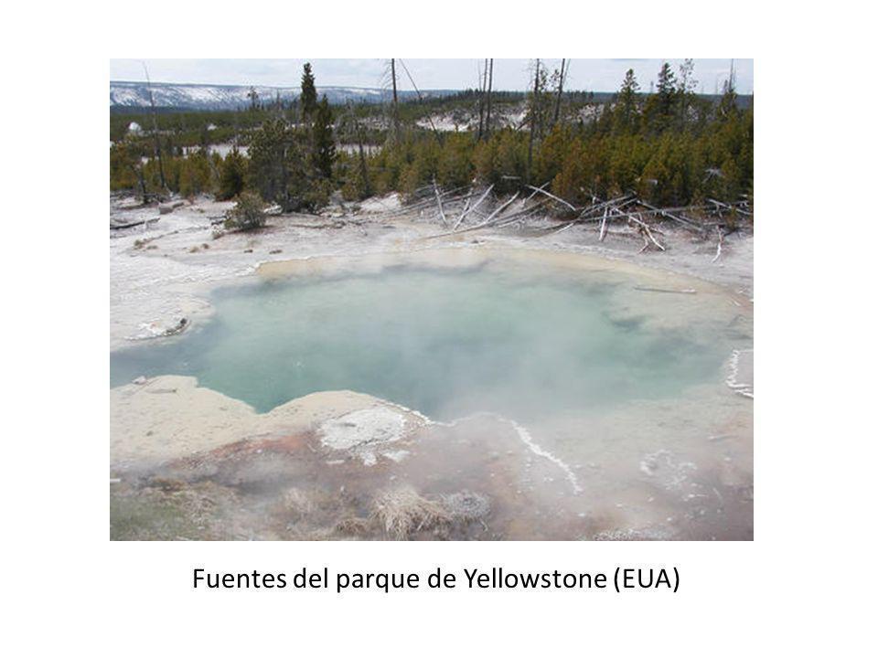 Fuentes del parque de Yellowstone (EUA)