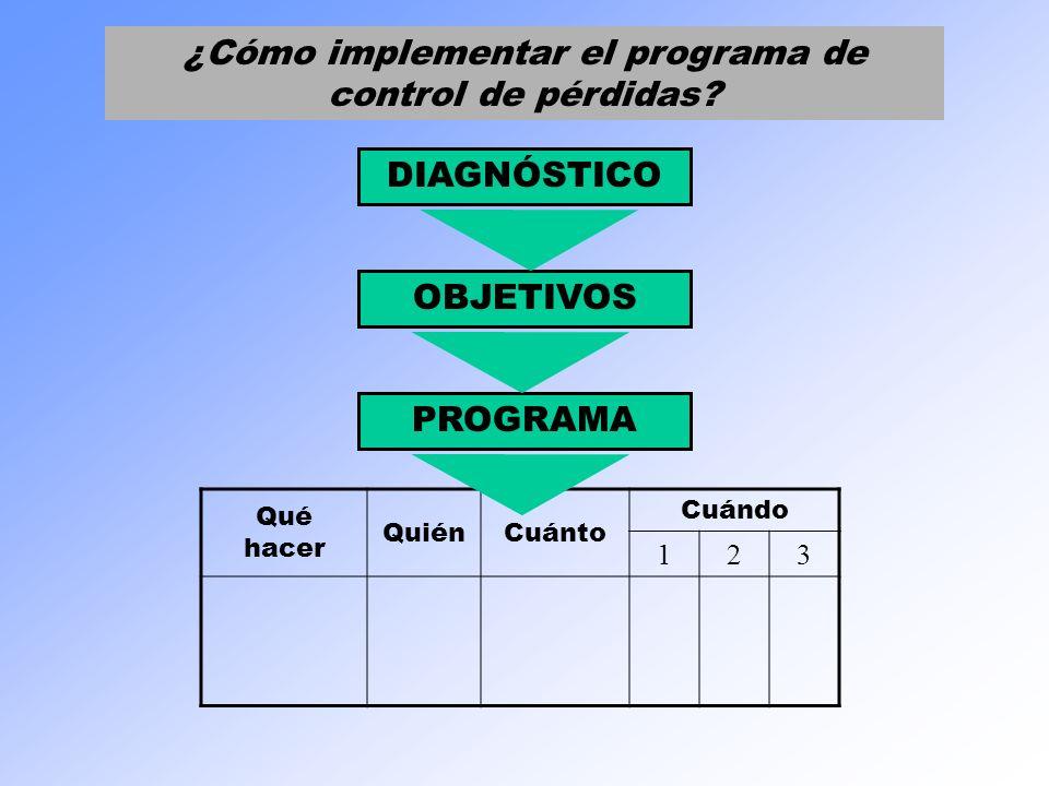 DIAGNÓSTICO OBJETIVOS PROGRAMA Qué hacer QuiénCuánto Cuándo 123 ¿Cómo implementar el programa de control de pérdidas?