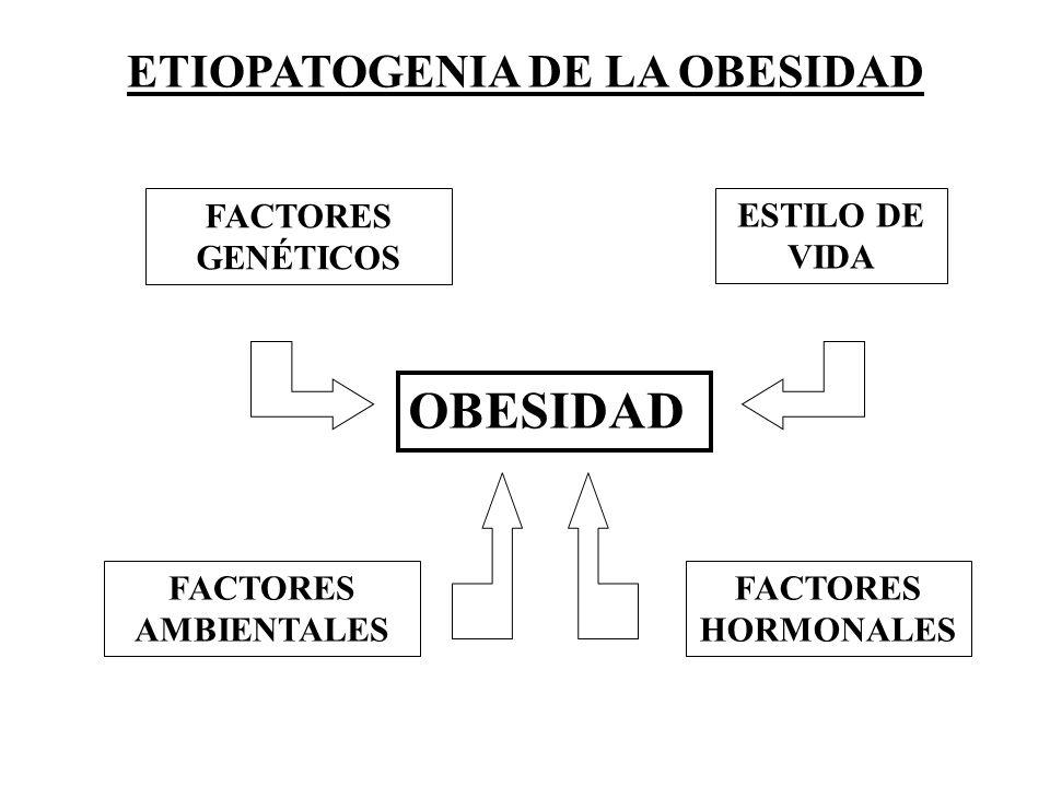 ETIOPATOGENIA DE LA OBESIDAD OBESIDAD FACTORES GENÉTICOS ESTILO DE VIDA FACTORES AMBIENTALES FACTORES HORMONALES