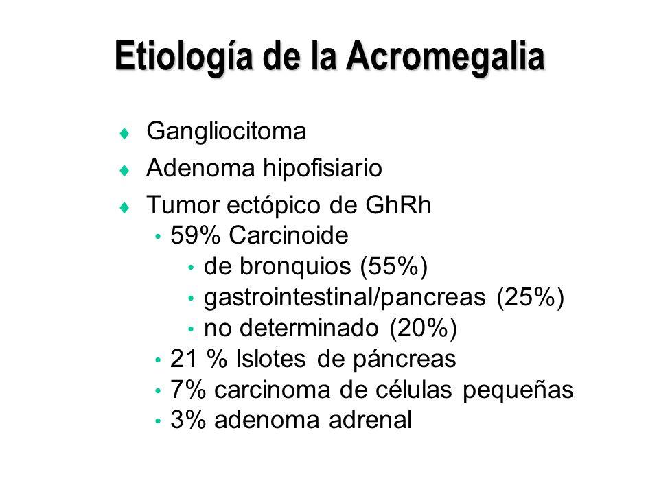 Etiología de la Acromegalia Gangliocitoma Adenoma hipofisiario Tumor ectópico de GhRh 59% Carcinoide de bronquios (55%) gastrointestinal/pancreas (25%