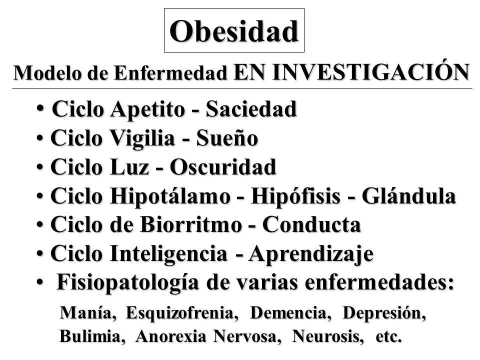 Obesidad Modelo de Enfermedad EN INVESTIGACIÓN Ciclo Apetito - Saciedad Ciclo Apetito - Saciedad Ciclo Vigilia - Sueño Ciclo Vigilia - Sueño Ciclo Luz