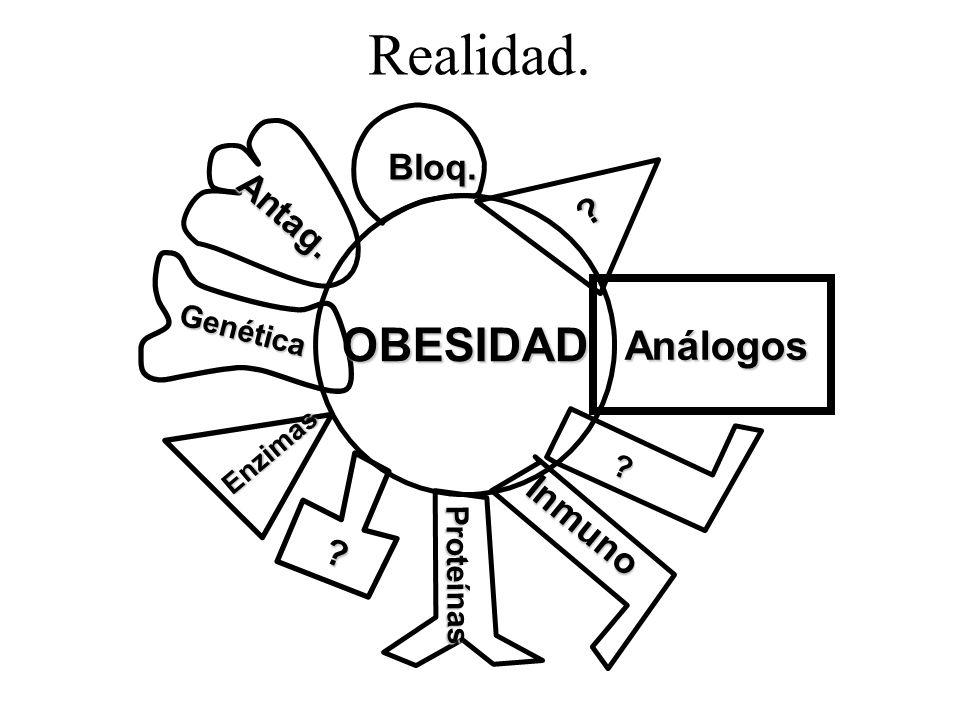 Realidad. ? Proteínas Proteínas Genética Análogos Análogos Antag. ? Enzimas ? Inmuno Bloq. OBESIDAD