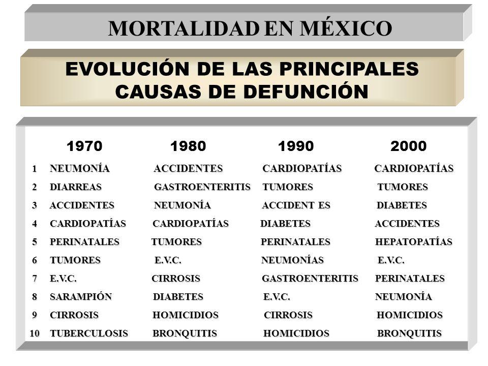 EVOLUCIÓN DE LAS PRINCIPALES CAUSAS DE DEFUNCIÓN 1970 1980 1990 2000 1 NEUMONÍA ACCIDENTES CARDIOPATÍAS CARDIOPATÍAS 2 DIARREAS GASTROENTERITIS TUMORE