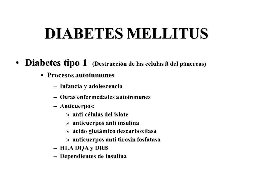DIABETES MELLITUS Diabetes tipo 1 (Destrucción de las células ß del páncreas)Diabetes tipo 1 (Destrucción de las células ß del páncreas) Procesos auto