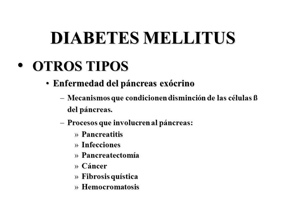 DIABETES MELLITUS OTROS TIPOS OTROS TIPOS Enfermedad del páncreas exócrinoEnfermedad del páncreas exócrino –Mecanismos que condicionen disminción de l