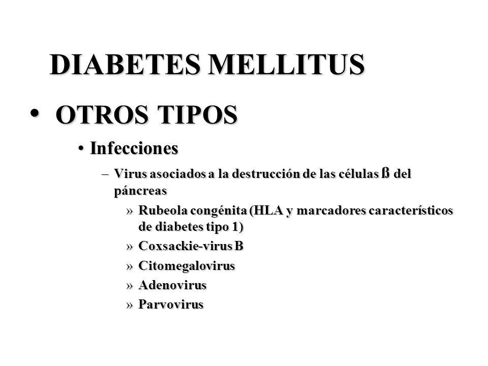 DIABETES MELLITUS OTROS TIPOS OTROS TIPOS InfeccionesInfecciones –Virus asociados a la destrucción de las células ß del páncreas »Rubeola congénita (H