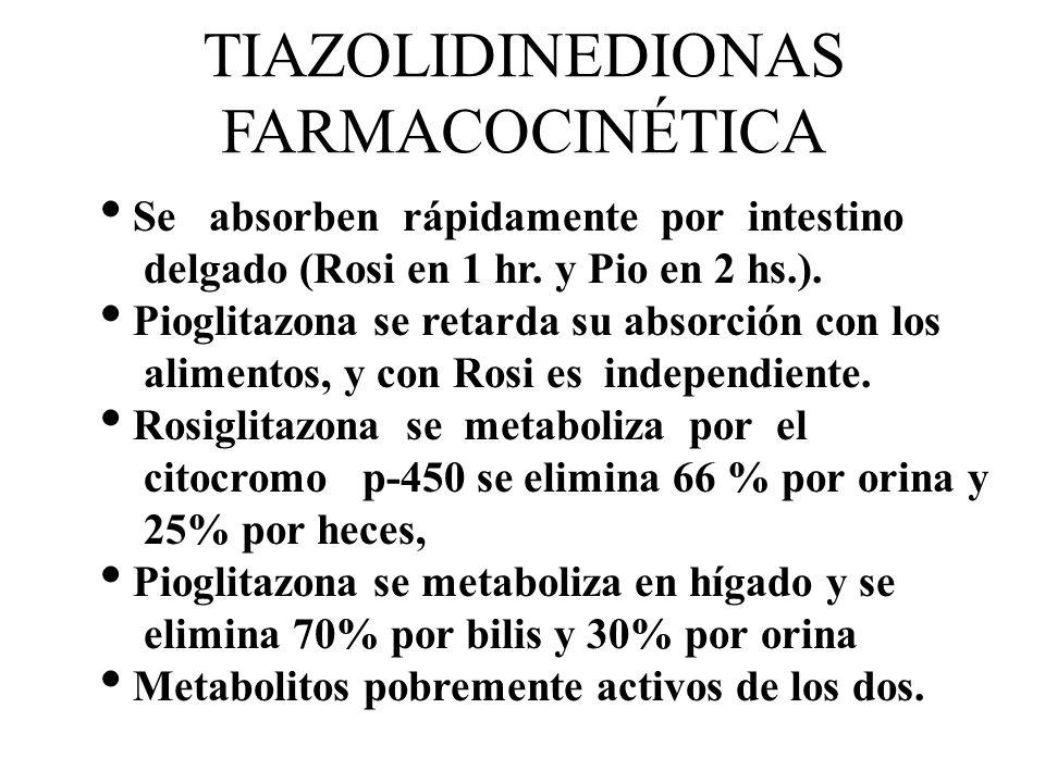 TIAZOLIDINEDIONAS FARMACOCINÉTICA Se absorben rápidamente por intestino delgado (Rosi en 1 hr. y Pio en 2 hs.). Pioglitazona se retarda su absorción c