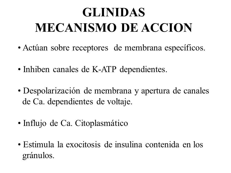 GLINIDAS MECANISMO DE ACCION Actúan sobre receptores de membrana específicos. Inhiben canales de K-ATP dependientes. Despolarización de membrana y ape