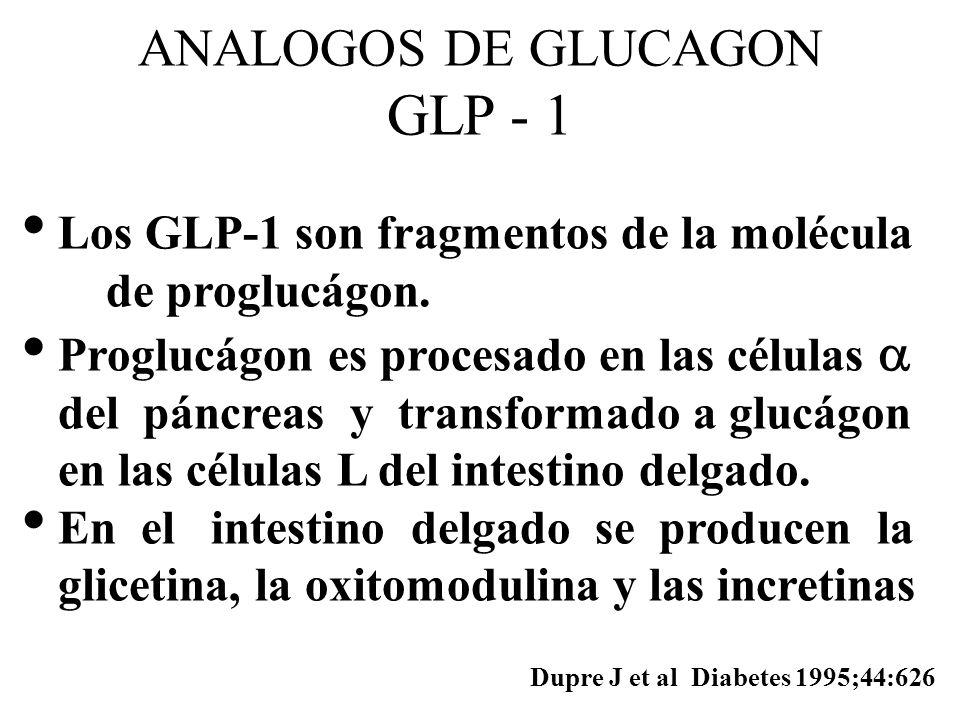 ANALOGOS DE GLUCAGON GLP - 1 Los GLP-1 son fragmentos de la molécula de proglucágon. Proglucágon es procesado en las células del páncreas y transforma