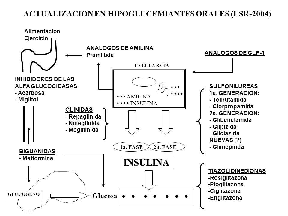 ACTUALIZACION EN HIPOGLUCEMIANTES ORALES (LSR-2004) Alimentación Ejercicio ANALOGOS DE AMILINA Pramlitida ANALOGOS DE GLP-1 INHIBIDORES DE LAS ALFA GL