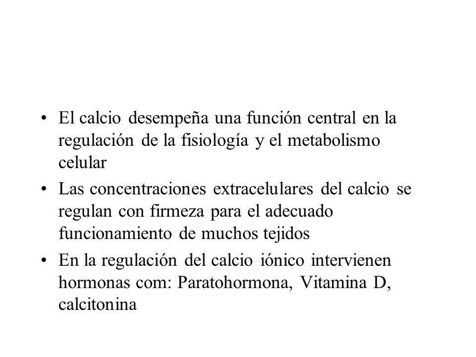 El calcio desempeña una función central en la regulación de la fisiología y el metabolismo celular Las concentraciones extracelulares del calcio se re