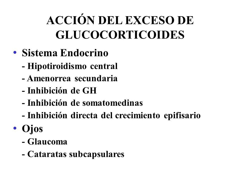 ACCIÓN DEL EXCESO DE GLUCOCORTICOIDES Sistema Endocrino - Hipotiroidismo central - Amenorrea secundaria - Inhibición de GH - Inhibición de somatomedin