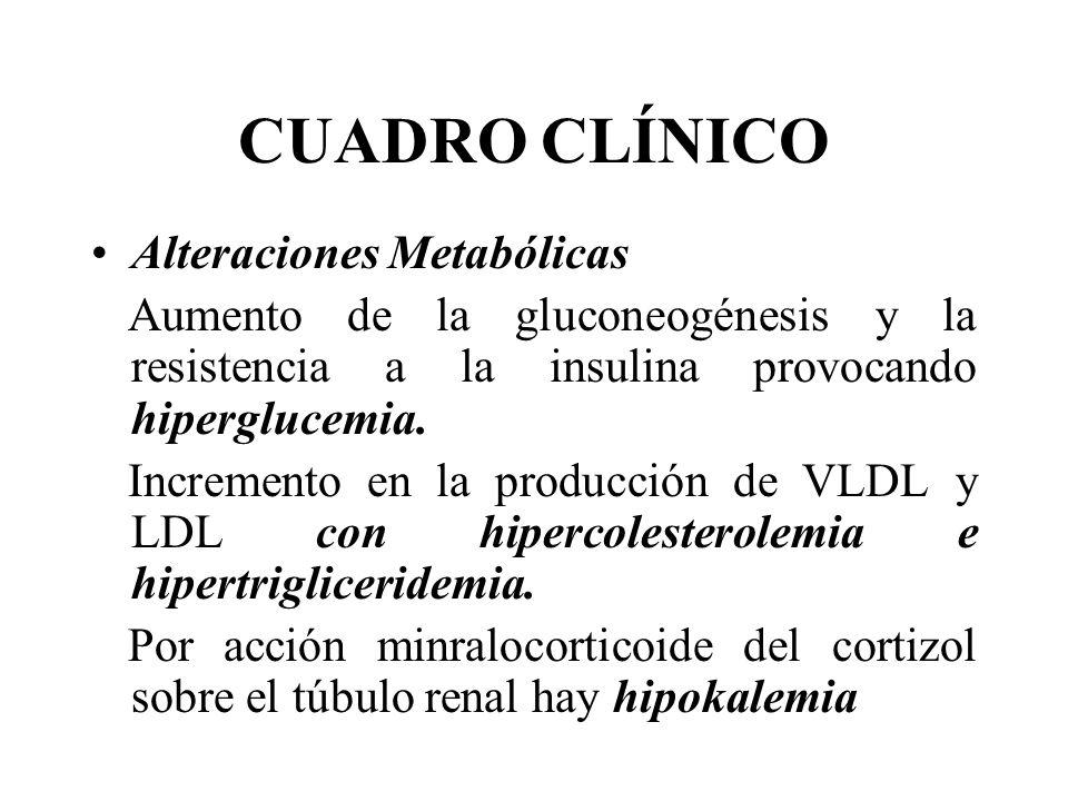 CUADRO CLÍNICO Alteraciones Metabólicas Aumento de la gluconeogénesis y la resistencia a la insulina provocando hiperglucemia. Incremento en la produc