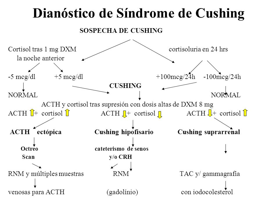 Dianóstico de Síndrome de Cushing SOSPECHA DE CUSHING Cortisol tras 1 mg DXM cortisoluria en 24 hrs la noche anterior -5 mcg/dl +5 mcg/dl +100mcg/24h