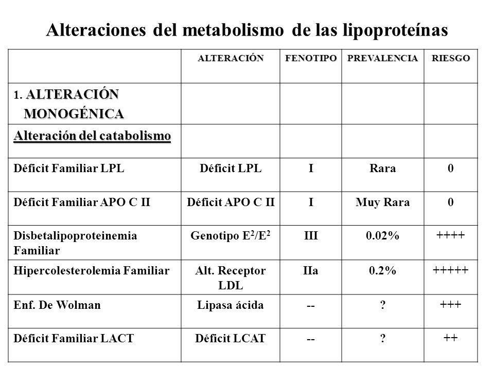 Alteraciones del metabolismo de las lipoproteínas ALTERACIÓNFENOTIPOPREVALENCIARIESGO ALTERACIÓN 1. ALTERACIÓN MONOGÉNICA MONOGÉNICA Alteración del ca