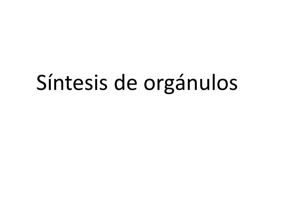 Síntesis de orgánulos