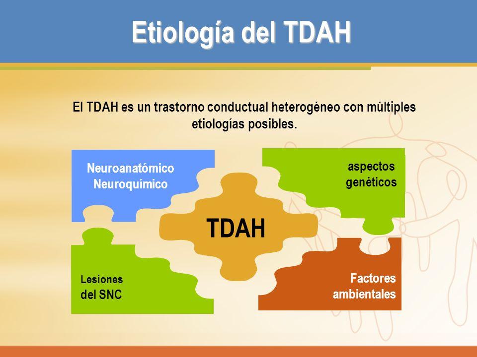 Etiología del TDAH El TDAH es un trastorno conductual heterogéneo con múltiples etiologías posibles. TDAH Neuroanatómico Neuroquímico Lesiones del SNC