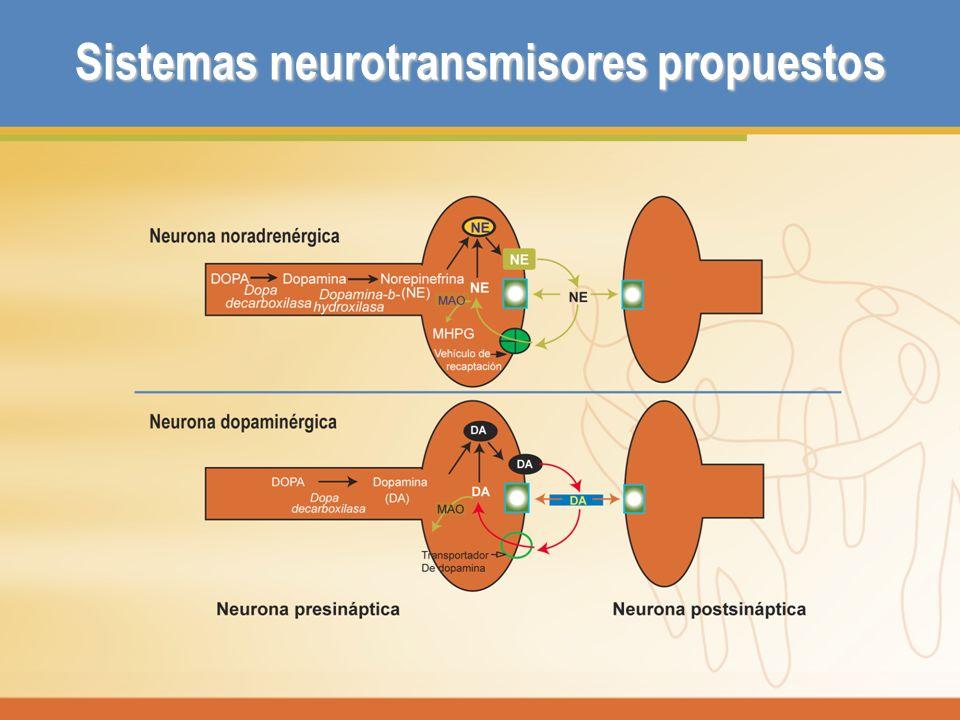Sistemas neurotransmisores propuestos