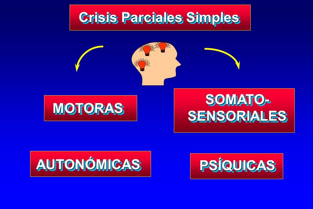 MOTORASMOTORAS SOMATO- SENSORIALES AUTONÓMICASAUTONÓMICAS PSÍQUICASPSÍQUICAS Crisis Parciales Simples