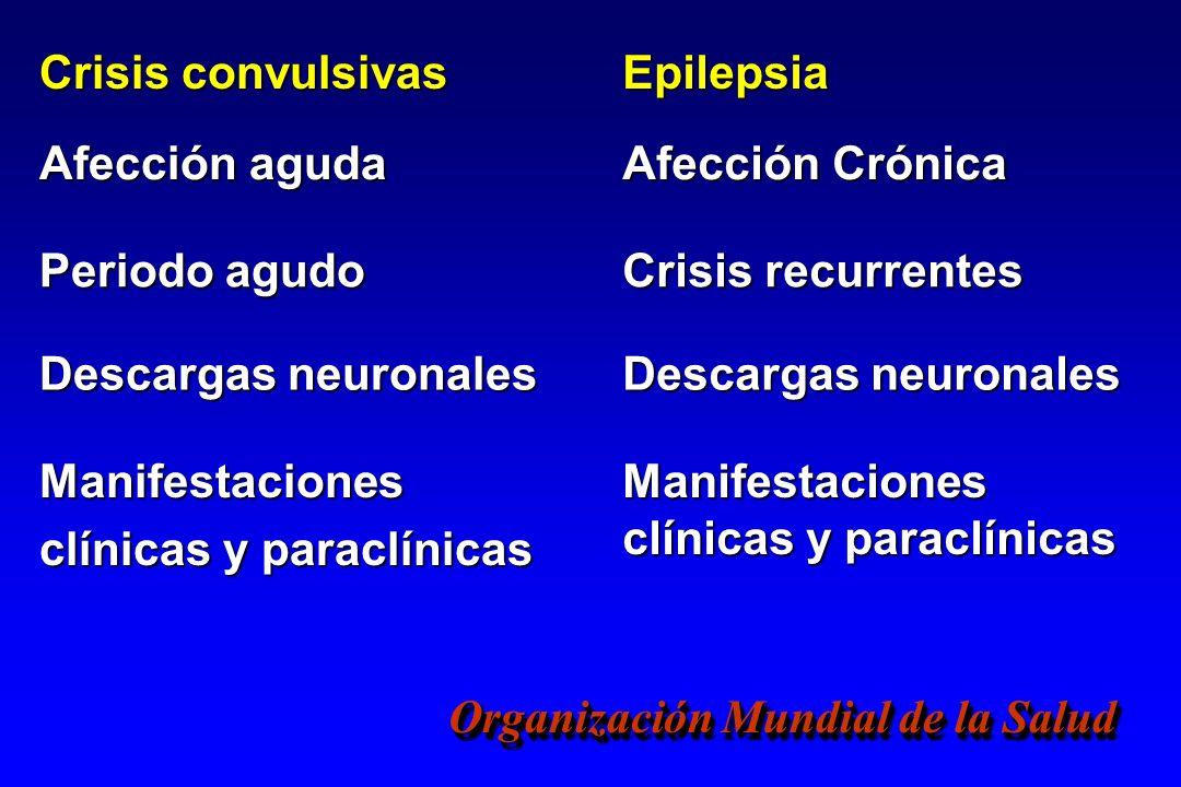 Organización Mundial de la Salud Crisis convulsivas Epilepsia Afección aguda Afección Crónica Periodo agudo Crisis recurrentes Descargas neuronales Ma