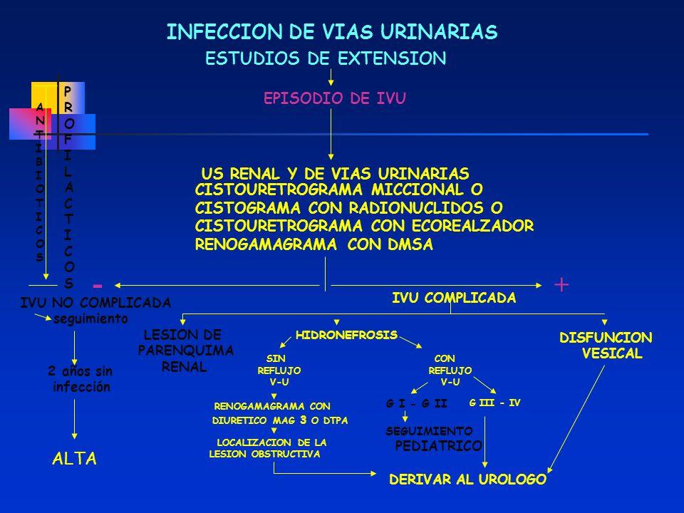 INFECCION DE VIAS URINARIAS ESTUDIOS DE EXTENSION EPISODIO DE IVU US RENAL Y DE VIAS URINARIAS CISTOURETROGRAMA MICCIONAL O CISTOGRAMA CON RADIONUCLID
