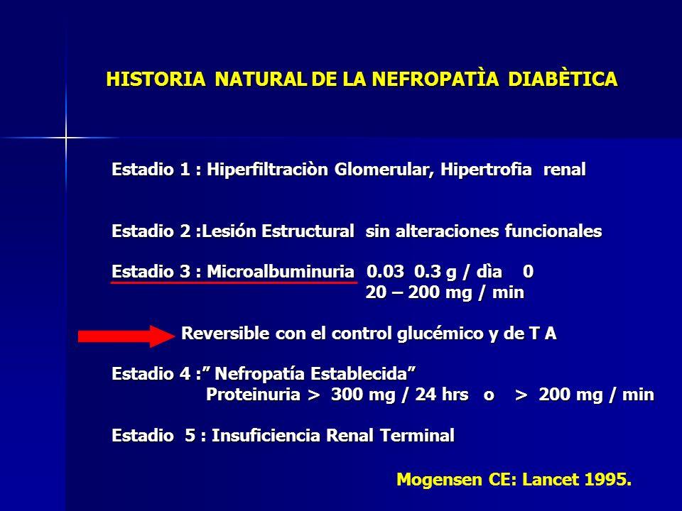 HISTORIA NATURAL DE LA NEFROPATÌA DIABÈTICA Estadio 1 : Hiperfiltraciòn Glomerular, Hipertrofia renal Estadio 2 :Lesión Estructural sin alteraciones f