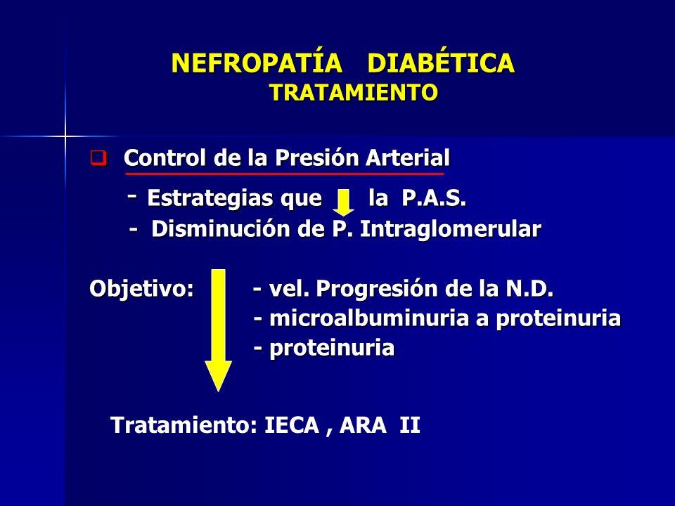NEFROPATÍA DIABÉTICA TRATAMIENTO NEFROPATÍA DIABÉTICA TRATAMIENTO Control de la Presión Arterial Control de la Presión Arterial - Estrategias que la P