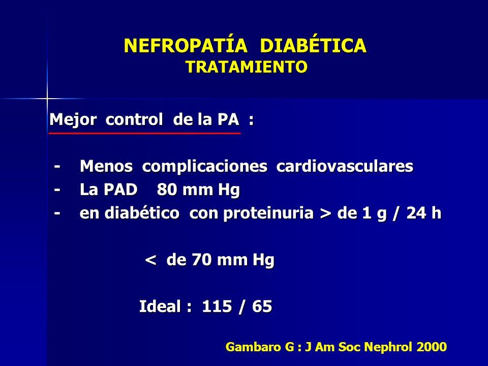 NEFROPATÍA DIABÉTICA TRATAMIENTO NEFROPATÍA DIABÉTICA TRATAMIENTO Mejor control de la PA : - Menos complicaciones cardiovasculares - Menos complicacio